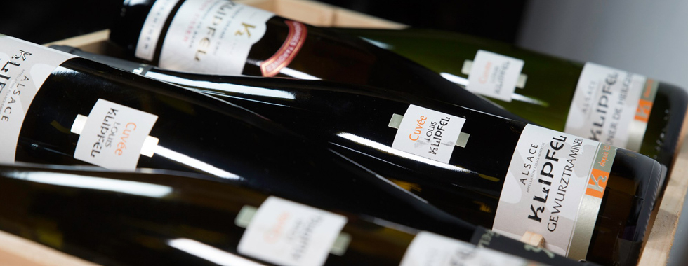 Vins Klipfel